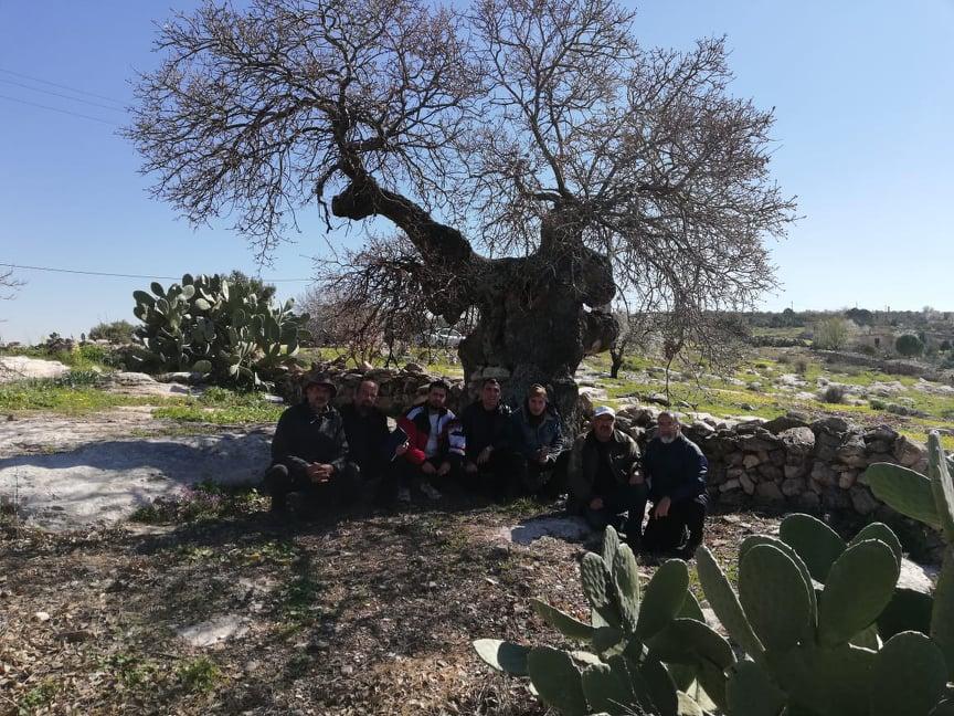 """المركز الوطني للبحوث الزراعية يطلق خطة لإنقاذ شجرة """" الخضر """" في منطقة """" النقيع """" الواقعة بين بلدتي عنبة وكفر كيفيا."""