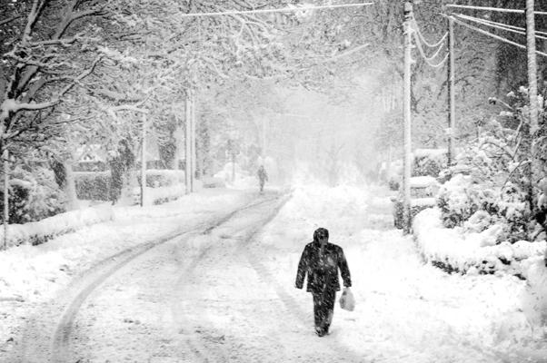 كيف تتصرف خلال العواصف الثلجية ؟
