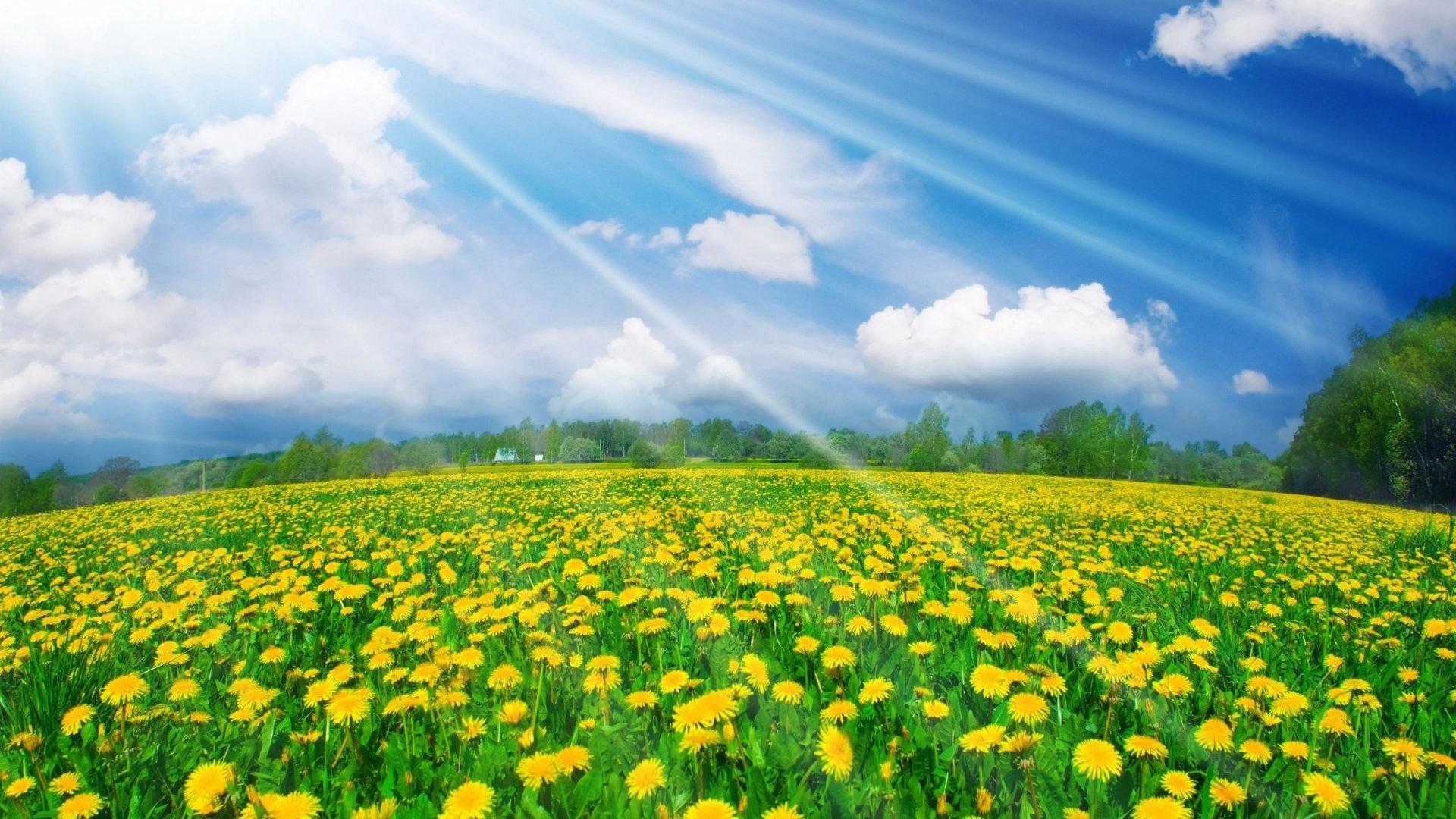 الأول من آذار.. بداية فصل الربيع في علم الأرصاد الجوية